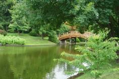 Gorgeous Japanese Garden