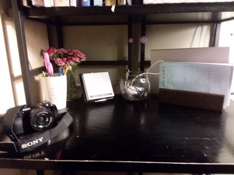 Orangutan Library shared a shelfie last week- thought I'd do a variation- so here is my desk