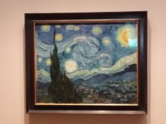 Can't go to MOMA with out seeing Starry Night