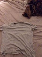 classic grey t shirt